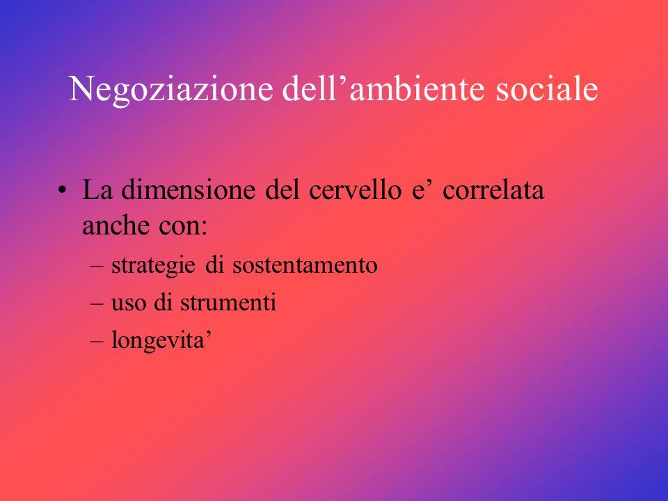 Negoziazione dell'ambiente sociale
