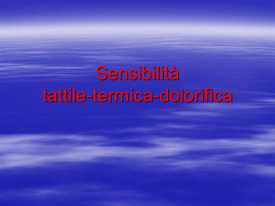 Sensibilità tattile-termica-dolorifica
