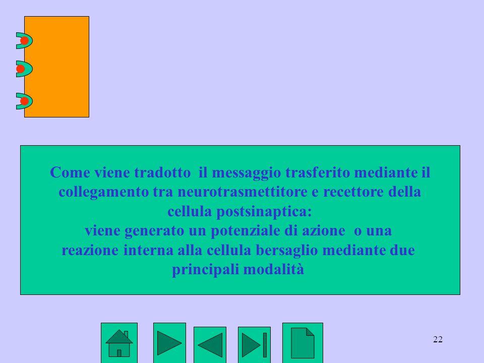 Come viene tradotto il messaggio trasferito mediante il