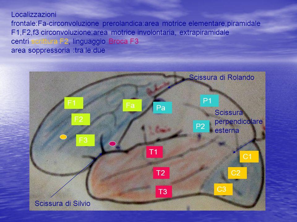 Localizzazioni frontale:Fa-circonvoluzione prerolandica:area motrice elementare,piramidale F1,F2,f3 circonvoluzione:area motrice involontaria, extrapiramidale centri scrittura F2, linguaggio Broca F3 area soppressoria :tra le due