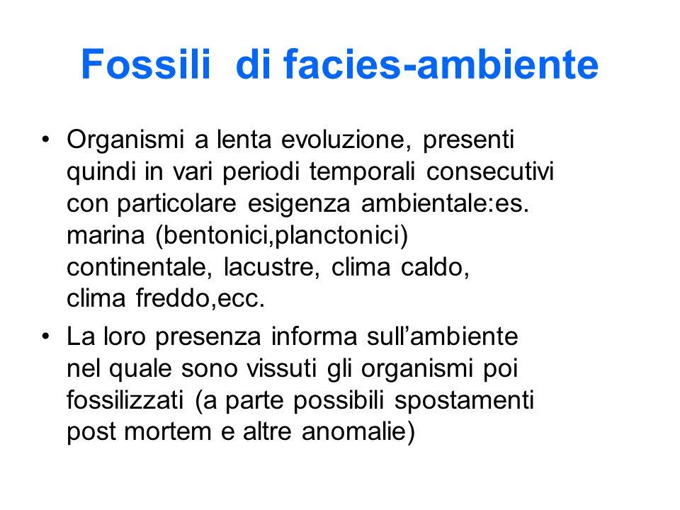 Fossili di facies-ambiente