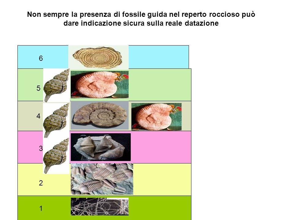Non sempre la presenza di fossile guida nel reperto roccioso può dare indicazione sicura sulla reale datazione