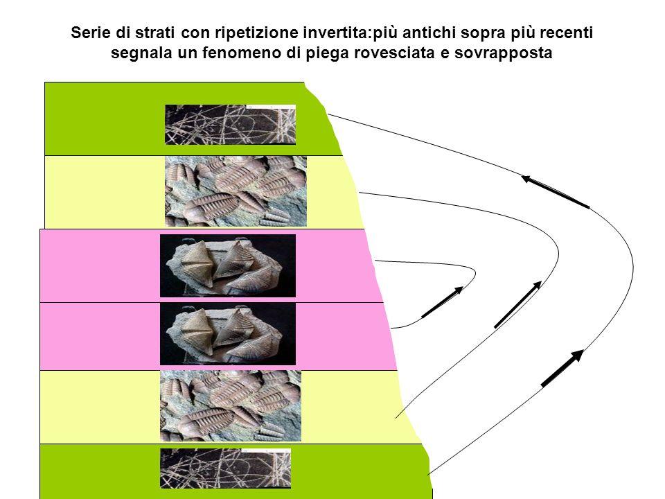 Serie di strati con ripetizione invertita:più antichi sopra più recenti segnala un fenomeno di piega rovesciata e sovrapposta
