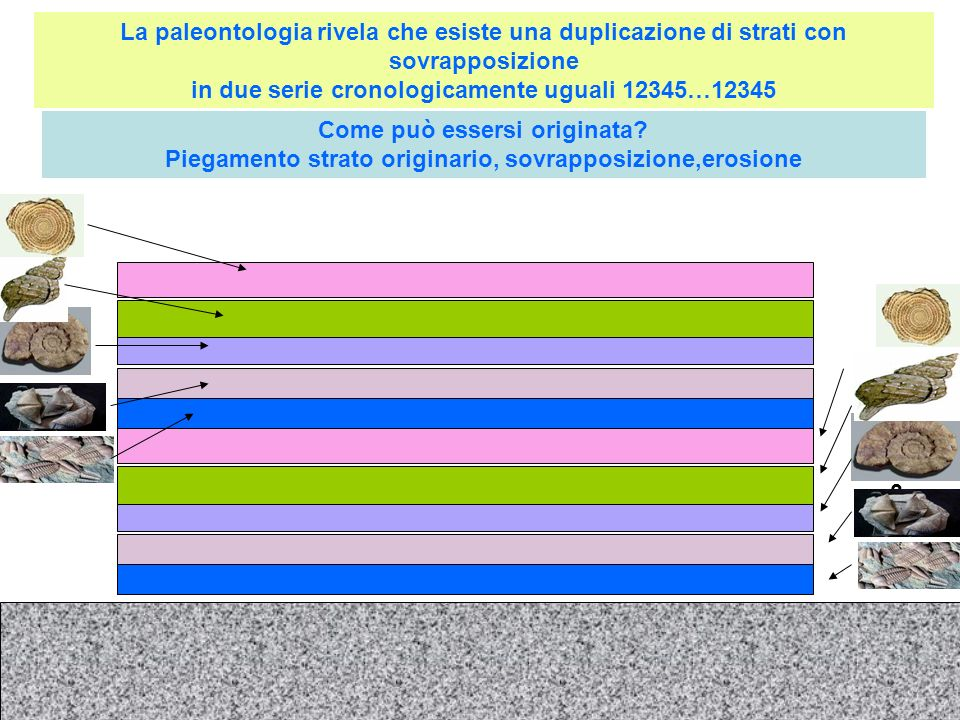 La paleontologia rivela che esiste una duplicazione di strati con sovrapposizione in due serie cronologicamente uguali 12345…12345