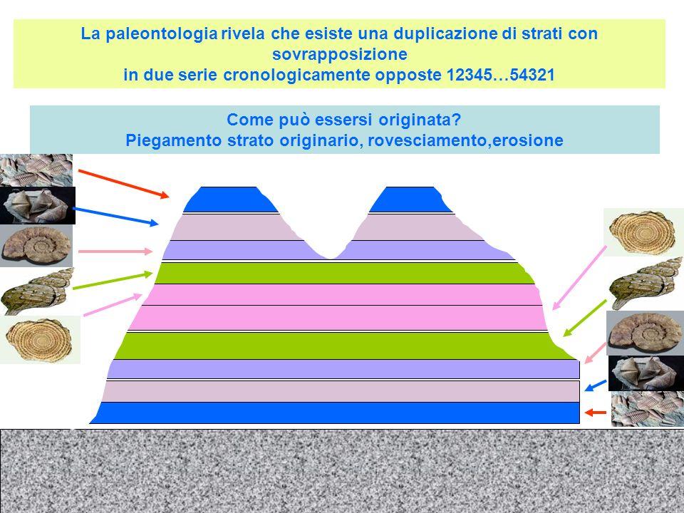 La paleontologia rivela che esiste una duplicazione di strati con sovrapposizione in due serie cronologicamente opposte 12345…54321
