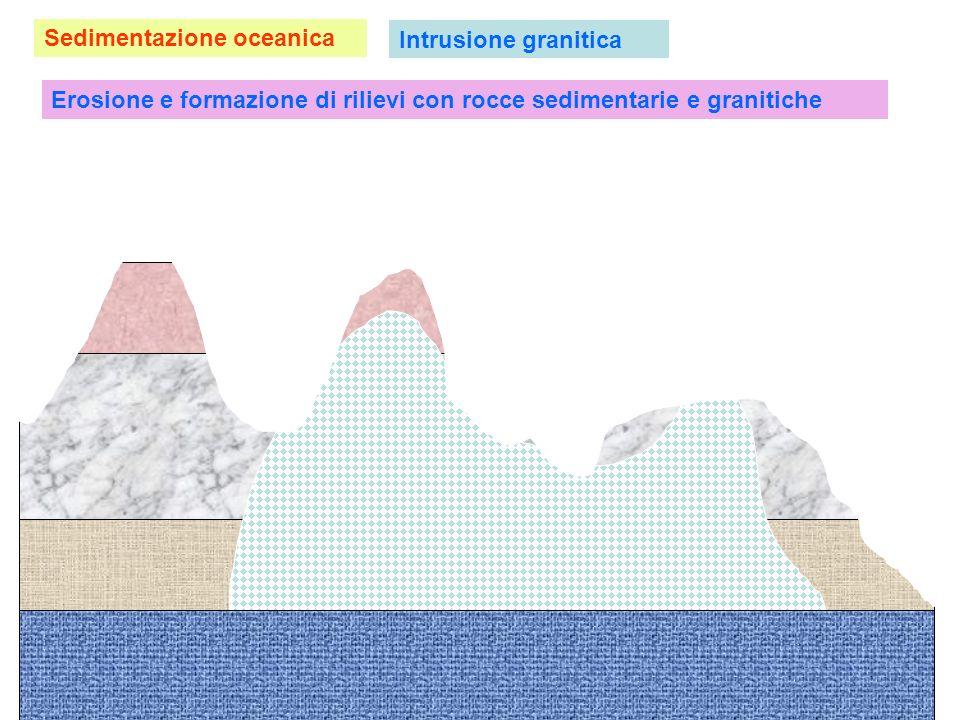 Sedimentazione oceanica