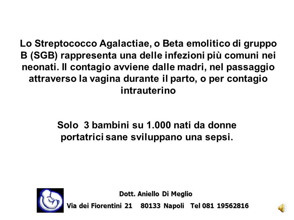Lo Streptococco Agalactiae, o Beta emolitico di gruppo B (SGB) rappresenta una delle infezioni più comuni nei neonati. Il contagio avviene dalle madri, nel passaggio attraverso la vagina durante il parto, o per contagio intrauterino