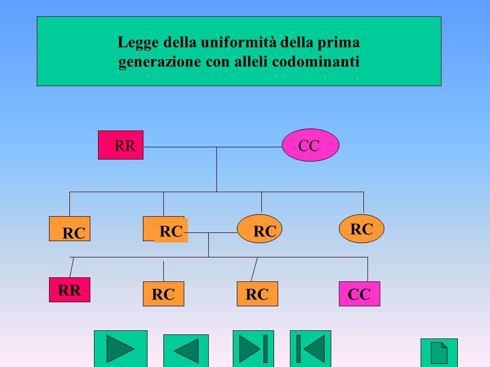 Legge della uniformità della prima generazione con alleli codominanti
