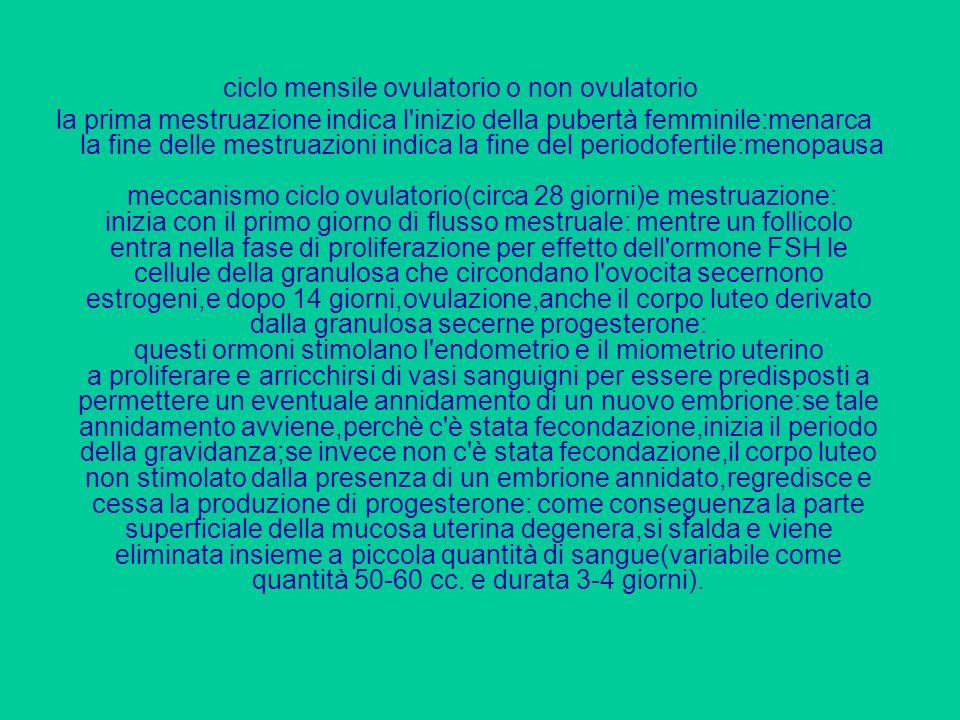 ciclo mensile ovulatorio o non ovulatorio