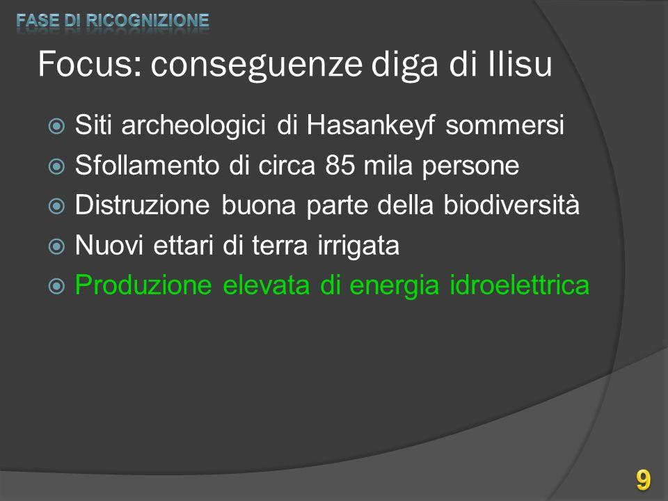 Focus: conseguenze diga di Ilisu