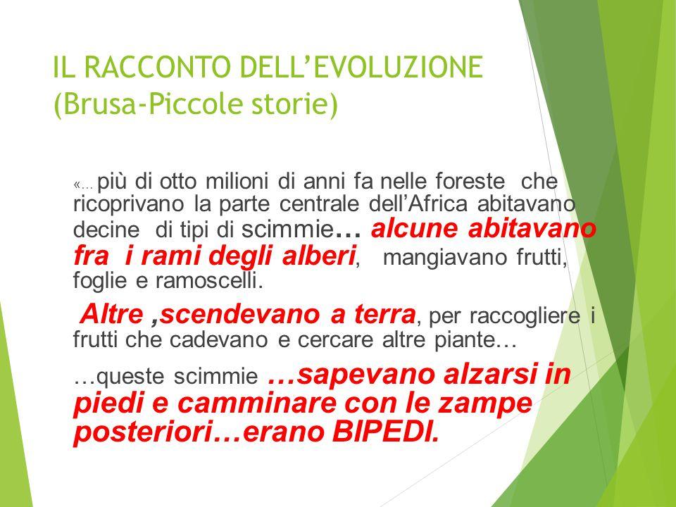 IL RACCONTO DELL'EVOLUZIONE (Brusa-Piccole storie)