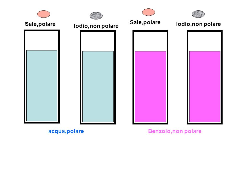 Sale,polare Sale,polare Iodio,non polare Iodio,non polare acqua,polare Benzolo,non polare