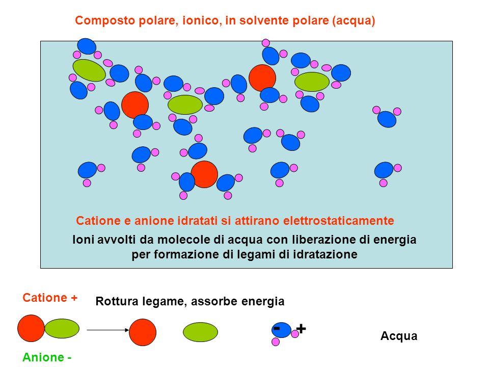 Composto polare, ionico, in solvente polare (acqua)