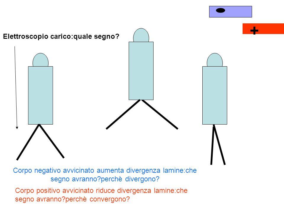 + Elettroscopio carico:quale segno