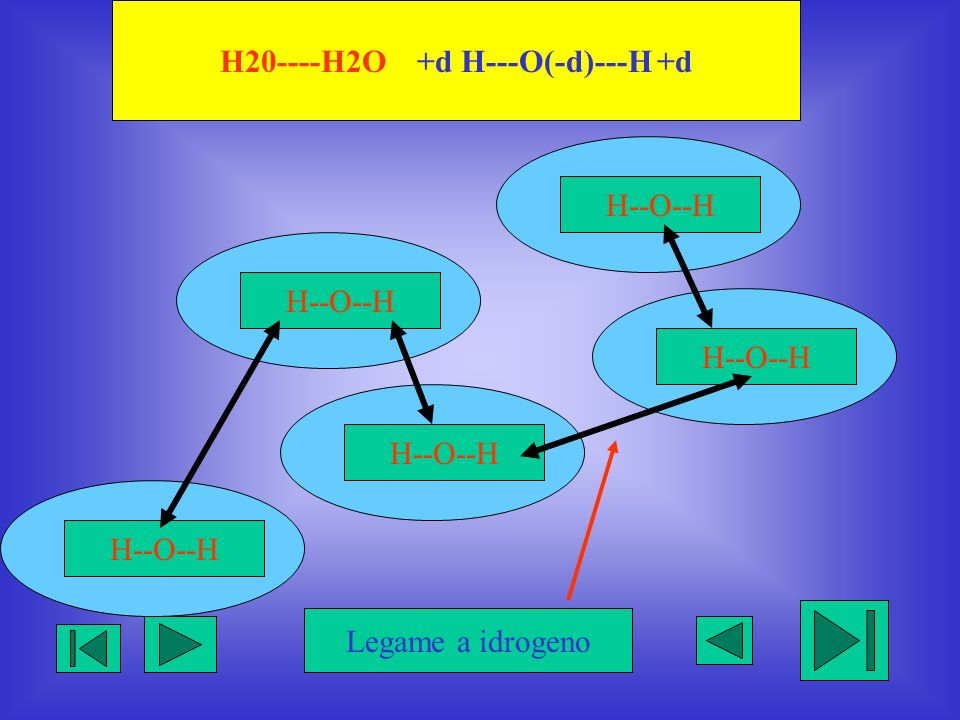 H20----H2O +d H---O(-d)---H +d