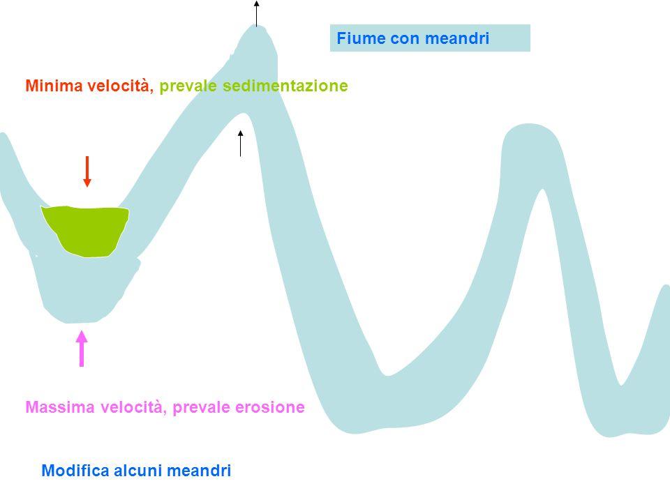 Fiume con meandri Minima velocità, prevale sedimentazione.