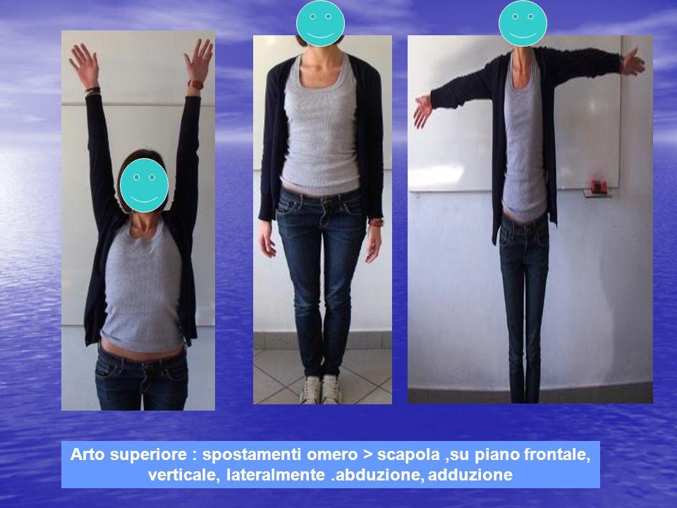 Arto superiore : spostamenti omero > scapola ,su piano frontale, verticale, lateralmente .abduzione, adduzione