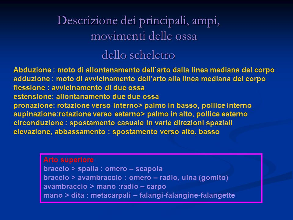 Descrizione dei principali, ampi, movimenti delle ossa