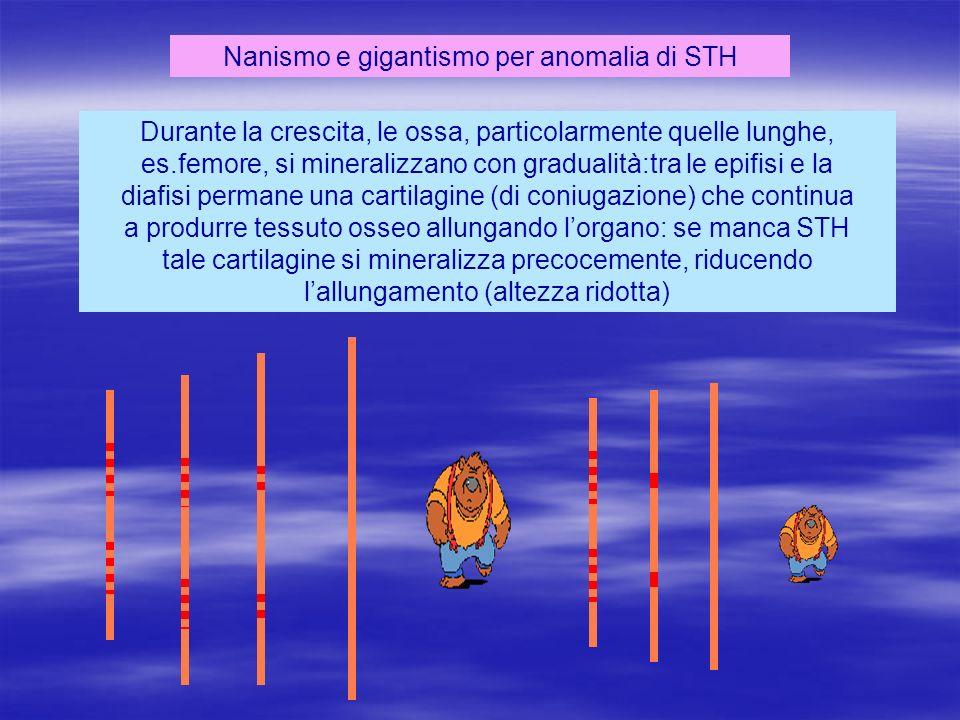 Nanismo e gigantismo per anomalia di STH