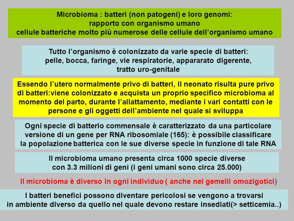 Microbioma : batteri (non patogeni) e loro genomi: rapporto con organismo umano cellule batteriche molto più numerose delle cellule dell'organismo umano