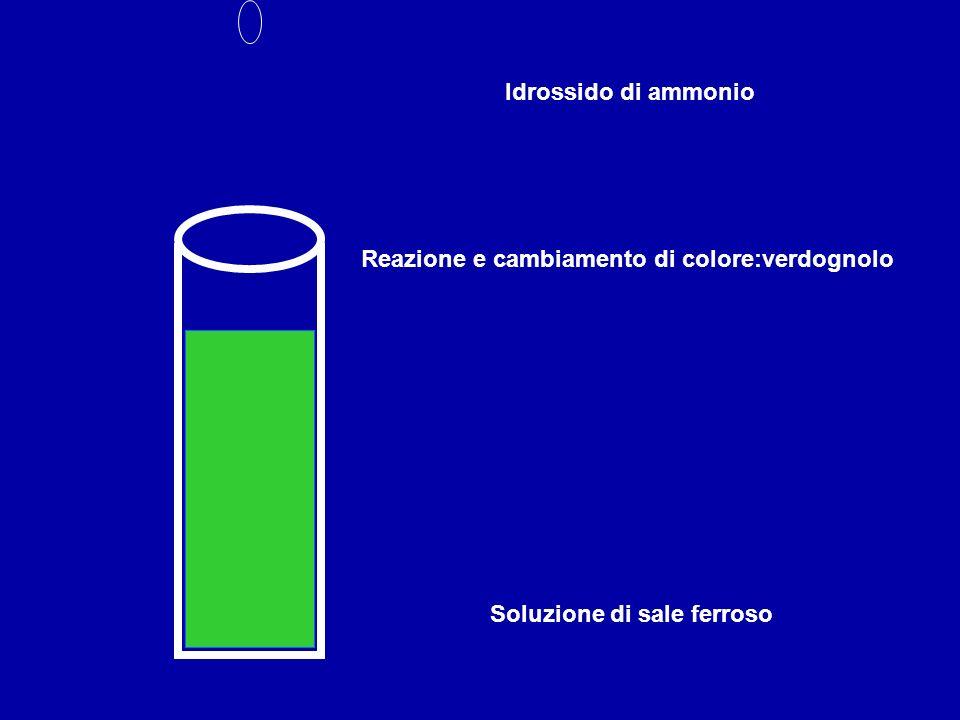 Idrossido di ammonio Reazione e cambiamento di colore:verdognolo Soluzione di sale ferroso