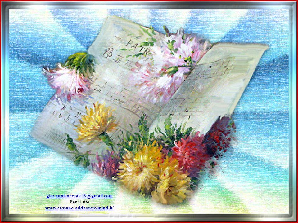 giovannicorreale19@gmail.com Per il sito www.cassano-addaonmymind.it/