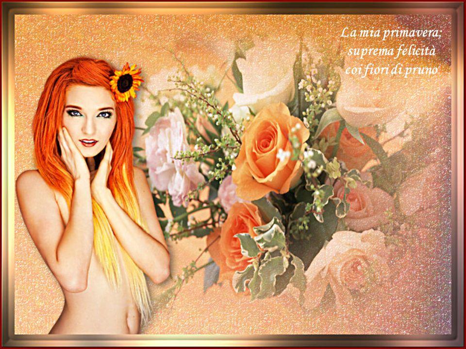 La mia primavera; suprema felicità coi fiori di pruno