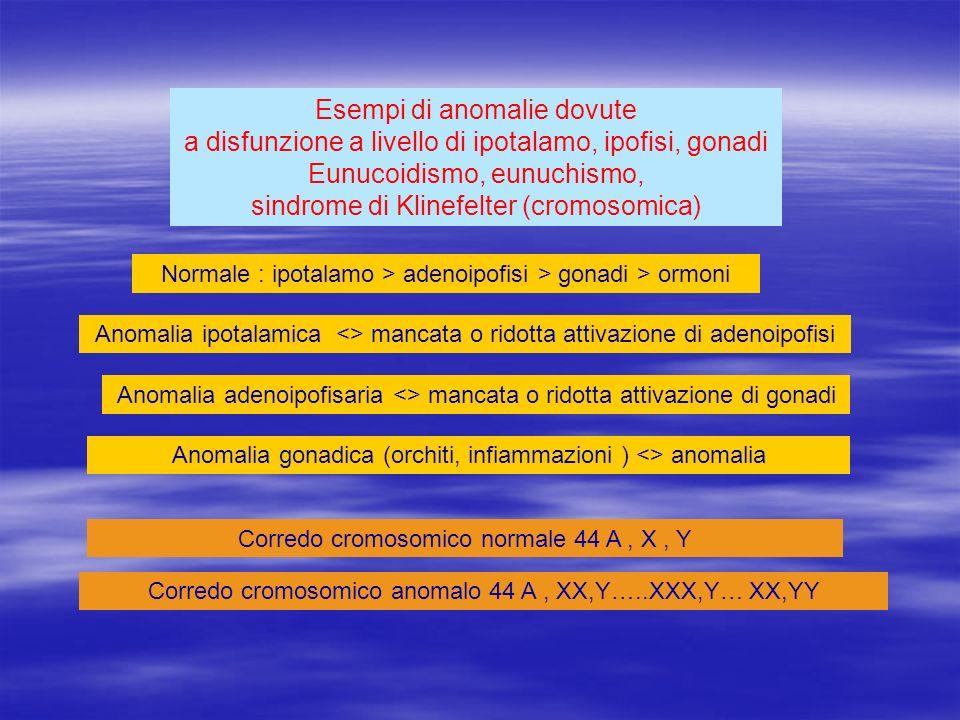 Esempi di anomalie dovute a disfunzione a livello di ipotalamo, ipofisi, gonadi Eunucoidismo, eunuchismo, sindrome di Klinefelter (cromosomica)