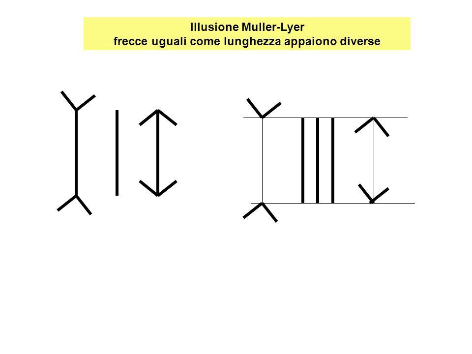 Illusione Muller-Lyer frecce uguali come lunghezza appaiono diverse