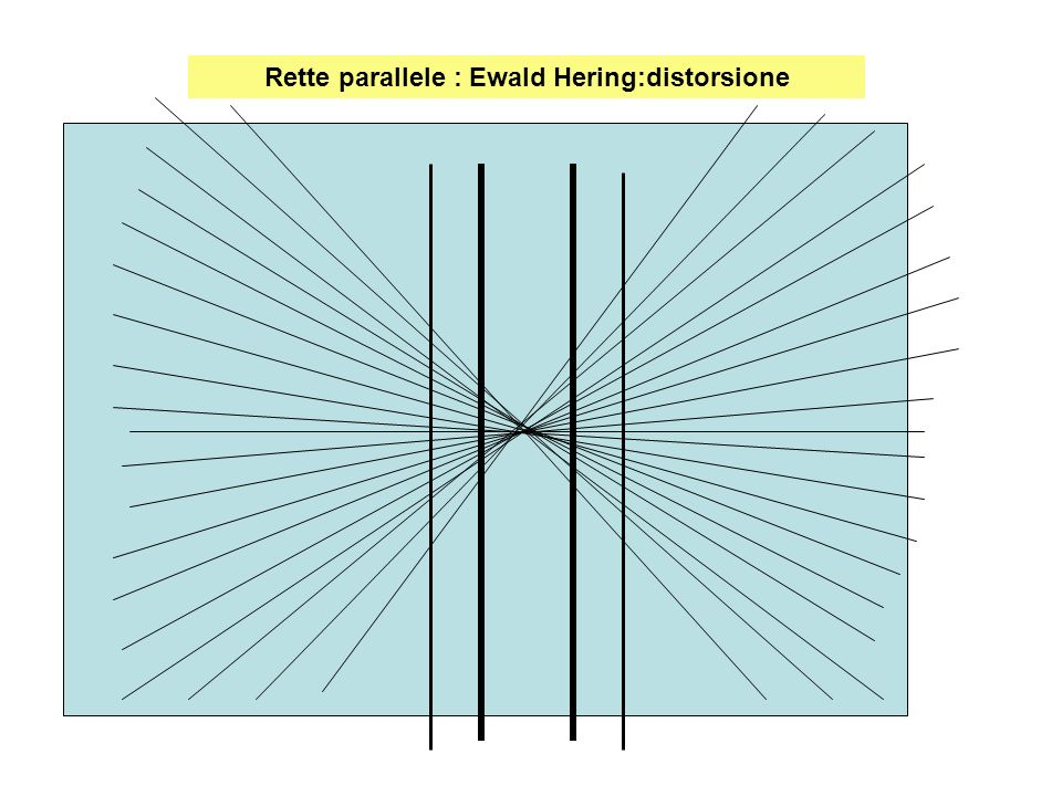 Rette parallele : Ewald Hering:distorsione