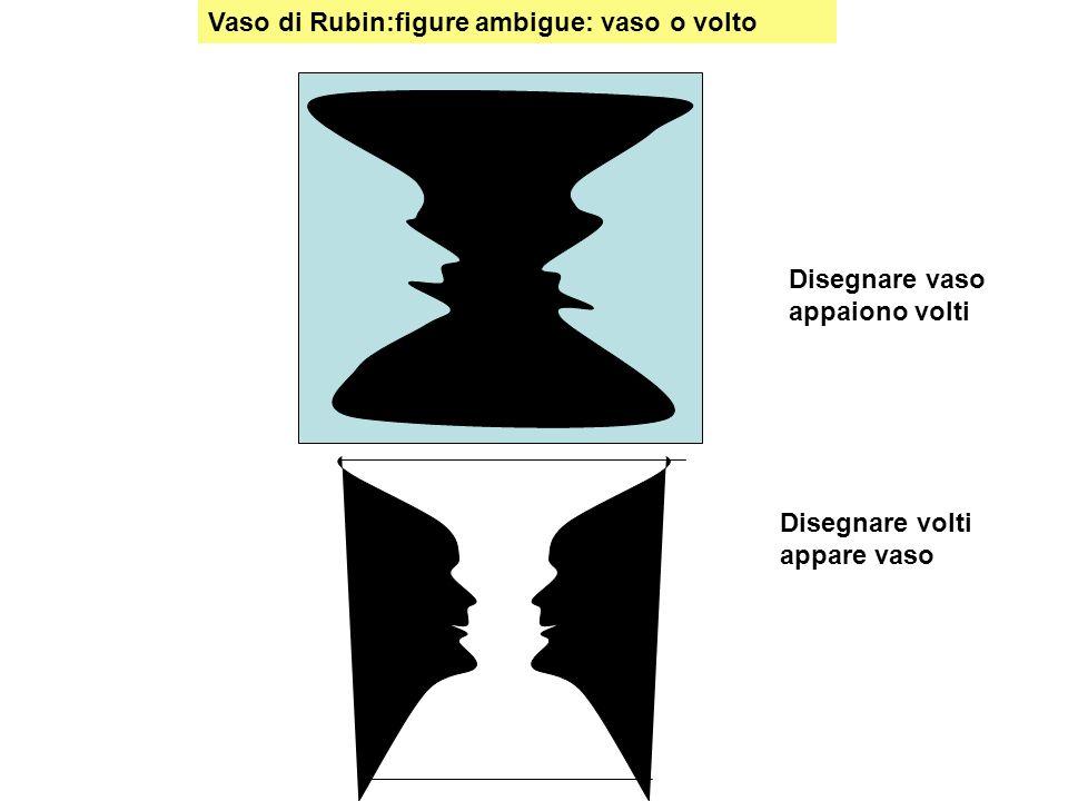 Vaso di Rubin:figure ambigue: vaso o volto