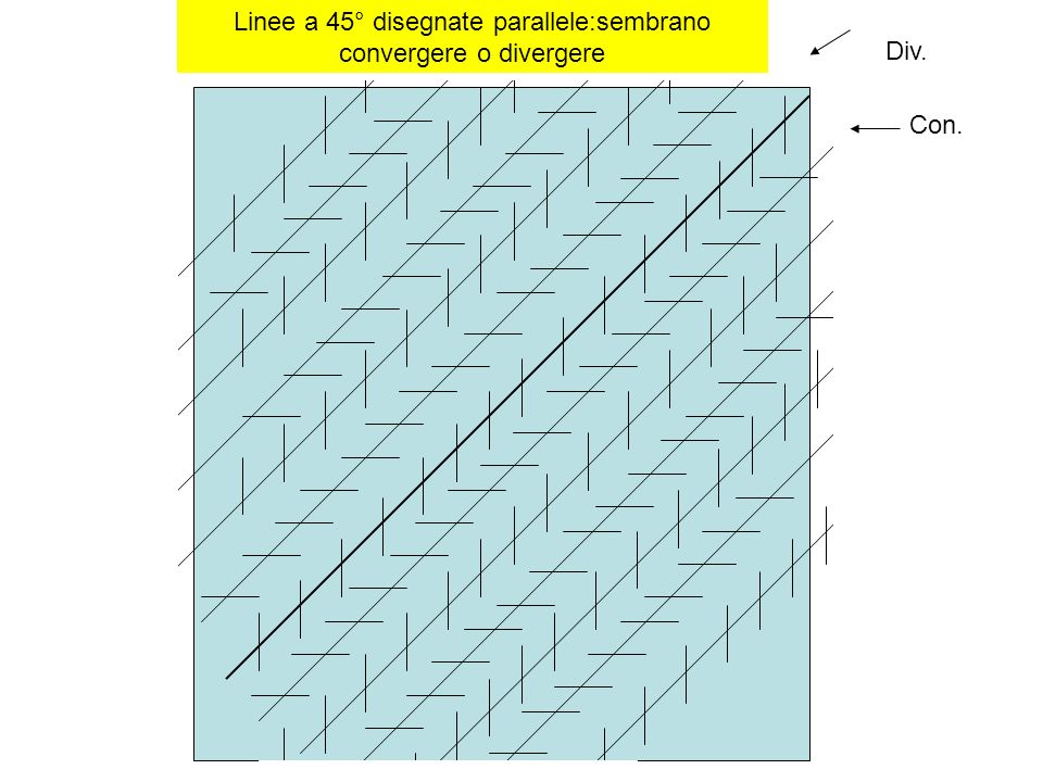 Linee a 45° disegnate parallele:sembrano convergere o divergere