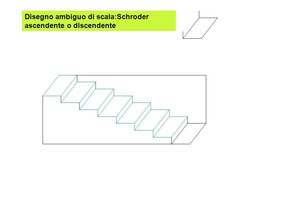 Disegno ambiguo di scala:Schroder ascendente o discendente