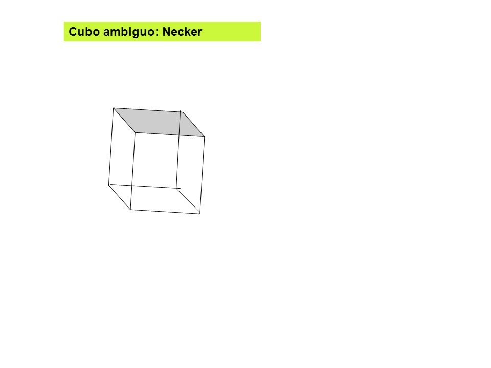Cubo ambiguo: Necker