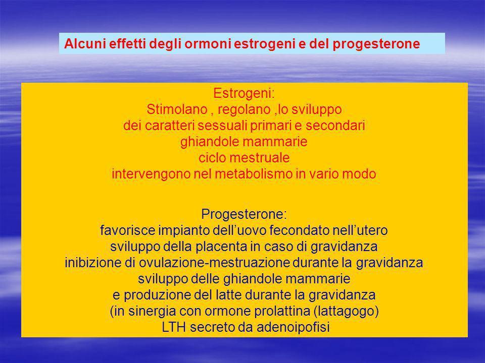 Alcuni effetti degli ormoni estrogeni e del progesterone