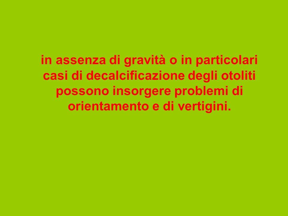 in assenza di gravità o in particolari casi di decalcificazione degli otoliti possono insorgere problemi di orientamento e di vertigini.