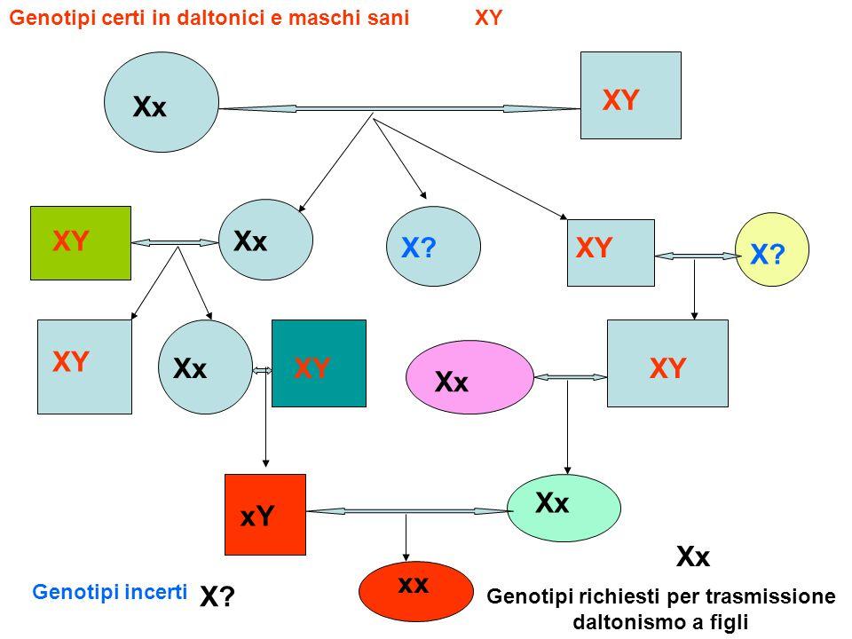 Genotipi richiesti per trasmissione daltonismo a figli