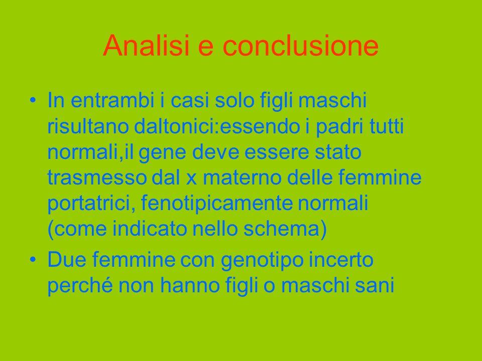 Analisi e conclusione