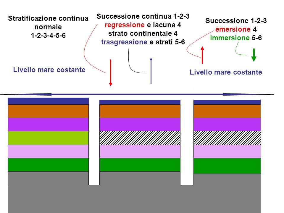 Stratificazione continua normale 1-2-3-4-5-6