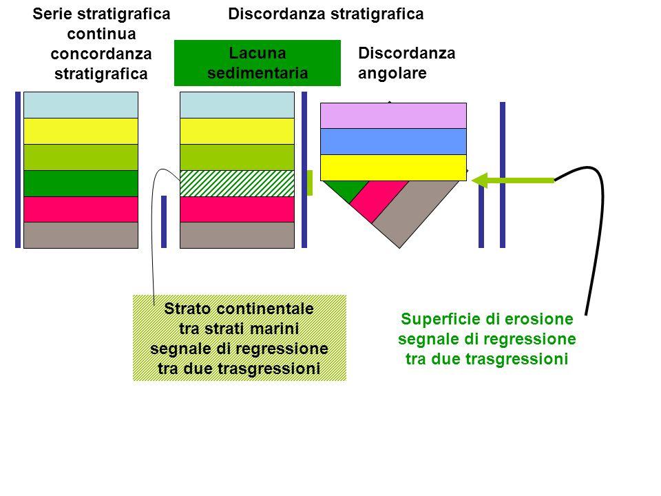 Serie stratigrafica continua concordanza stratigrafica