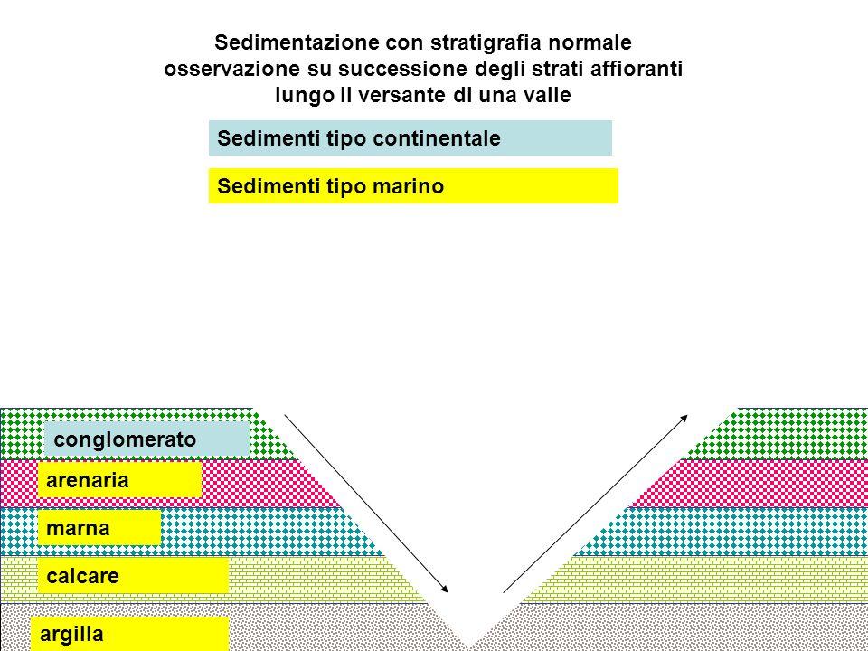 Sedimentazione con stratigrafia normale osservazione su successione degli strati affioranti lungo il versante di una valle