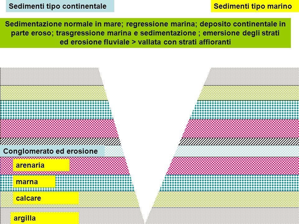 Sedimenti tipo continentale