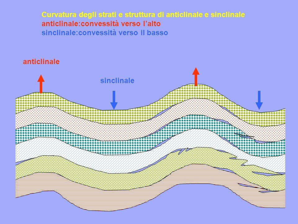Curvatura degli strati e struttura di anticlinale e sinclinale anticlinale:convessità verso l'alto sinclinale:convessità verso il basso