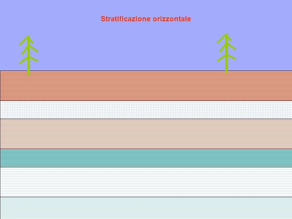 Stratificazione orizzontale