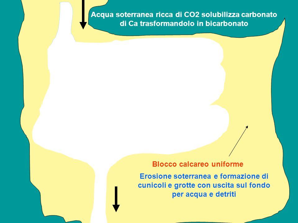 Acqua soterranea ricca di CO2 solubilizza carbonato di Ca trasformandolo in bicarbonato