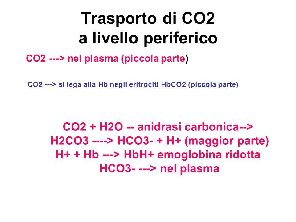 Trasporto di CO2 a livello periferico