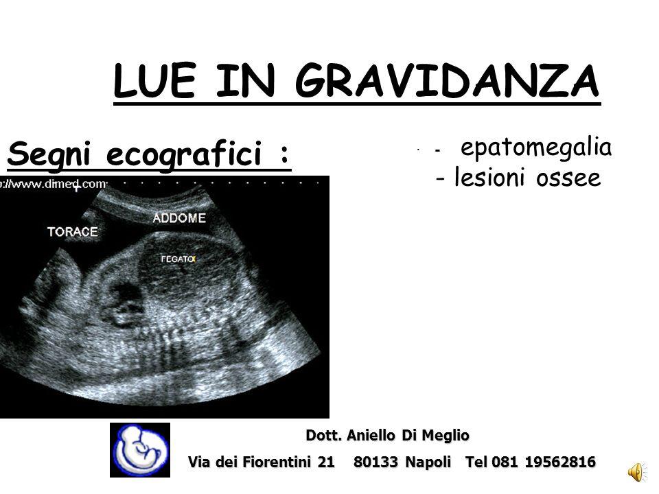 LUE IN GRAVIDANZA Segni ecografici : - lesioni ossee · - epatomegalia