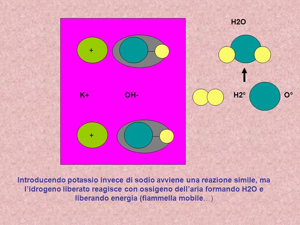 H2O+ H2° O° K+ OH- +