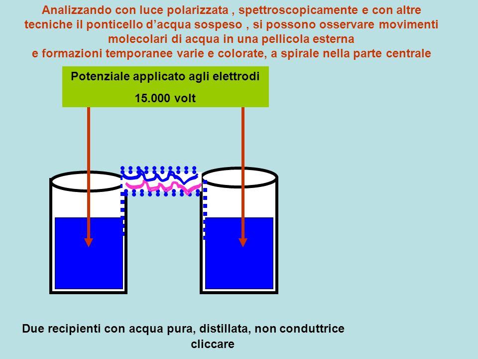 Potenziale applicato agli elettrodi