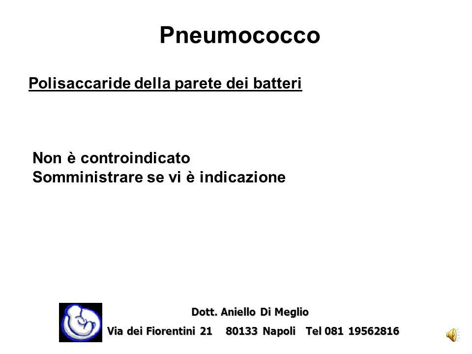 Pneumococco Polisaccaride della parete dei batteri